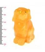 Sarı Akik Köpek