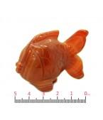 Akik Japon Balığı
